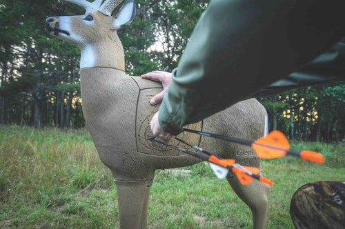 By following the seven-step shooting routine detailed below, you'll improve your accuracy on everything from 3-D targets to live animals.