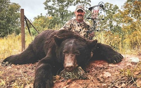 Deadly Black Bear Shot Placement for Bowhunters