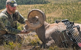 Bowhunting Video: South Dakota Bighorn