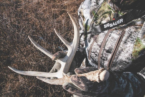 The author shed hunts to scout for big bucks; picking up cast antlers is an added bonus.
