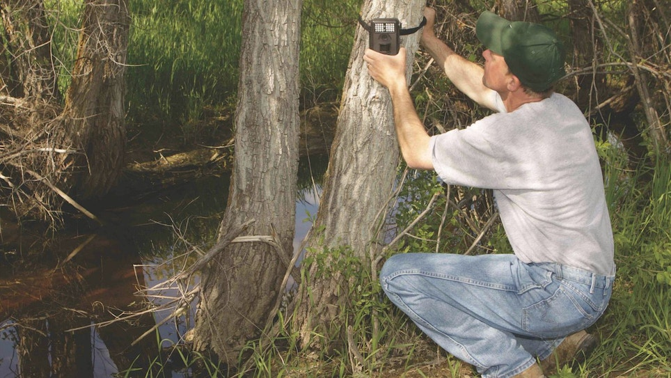 5 Can't-Miss Trail Camera Locations for Whitetails