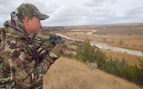 Find And Hunt Coyote Bedding Areas