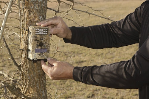 Establishing a series of scouting cameras to help you gather whitetail movement patterns while you're away is a critical summer chore during your visit.