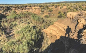 Bowhunting Velvet-Racked New Mexico Muleys