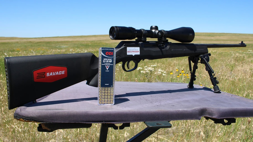 Savage Adds .22 LR To Its Semi-Auto Line
