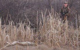 Scent Control Tactics for Close-Quarters Coyotes