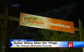 Alligator Attacks Worker At Forever Florida Attraction