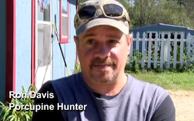 Hunter Says Attack By 'Curious' Black Bear Wasn't 'Vicious'