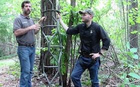 Video: Treestand Concealment With Summit Vine Series