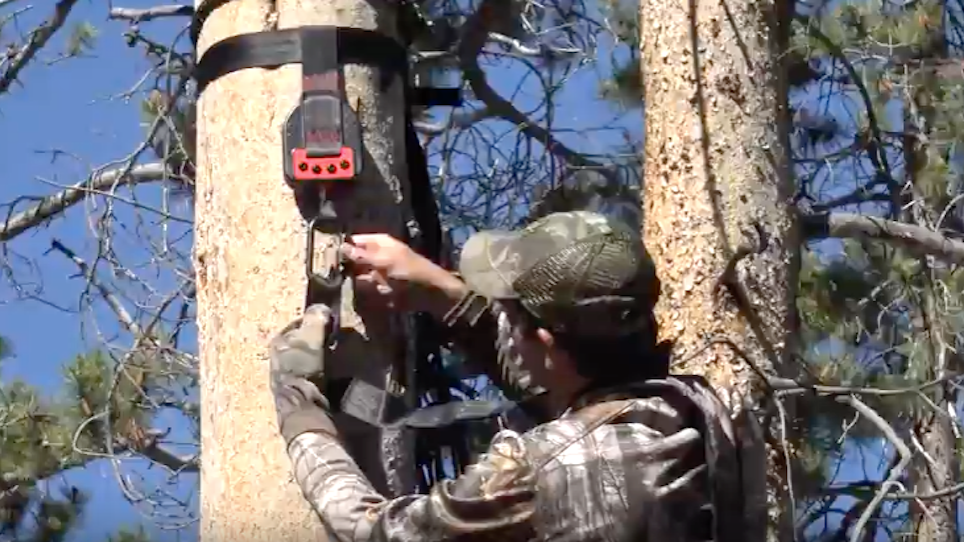 The Emergency Descender Doesn't Just Make a Hunter Comfortable — It Prevents Suspension Trauma