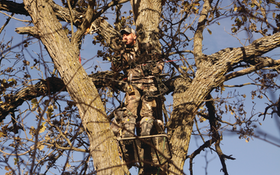 How High Should I Hang My Treestand?