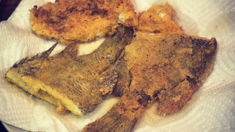 Whole Bluegills, Grits and Crumbled Tails and Fins