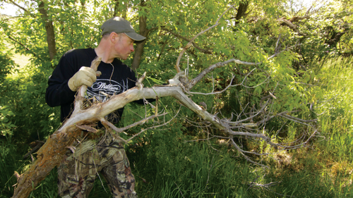 Placing a log across a regularly used trail can make deer stop and give you a standing shot. Photo: Mark Kayser