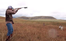 VIDEO: Pheasant Hunting With A Silencer