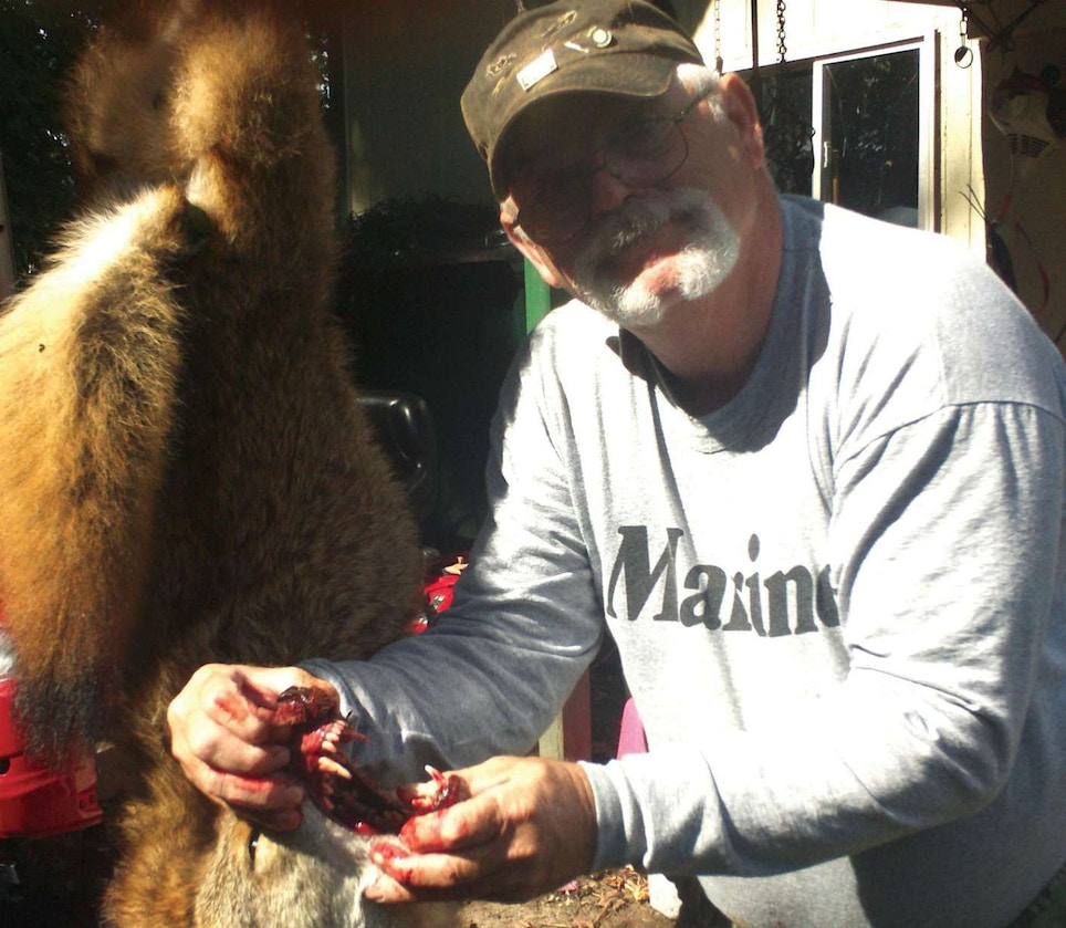 Hunter Attacked by 'Dead' Coyote