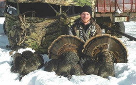 Winter Turkey Tactics: How to Arrow a Snowbird