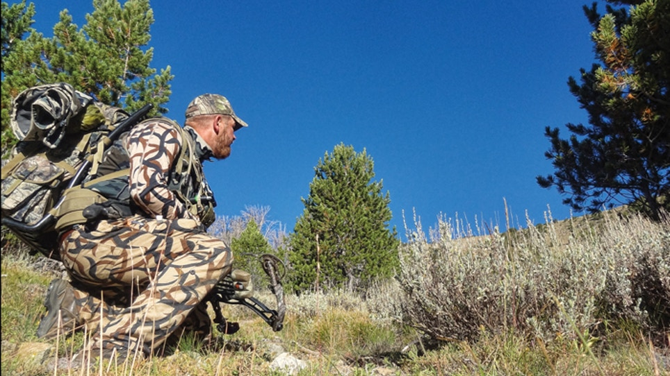 Elk Hunting Tips From Spot-And-Stalk Experts