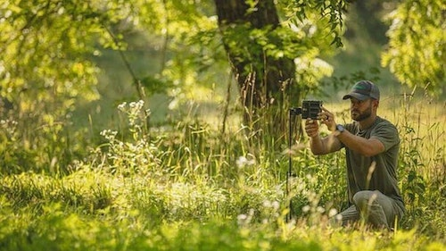 Summer is an excellent time to begin surveying your local deer herd with the aid of trail cameras.