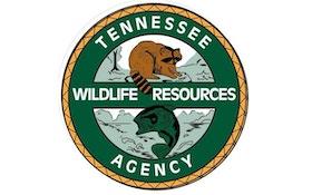Tennessee gun deer season set to open
