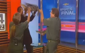 VIDEO: TV Anchor Wrestles With Gator On Air