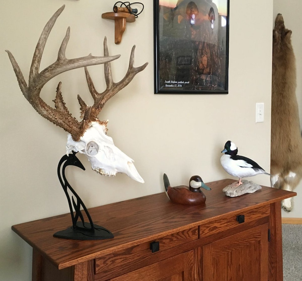 For a better photo angle, the author moved the Table Hooker holding his Kansas buck from the top of a gun cabinet to an end table.
