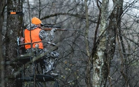 15 Pros and Cons of Whitetail Deer Hunting in the Rain