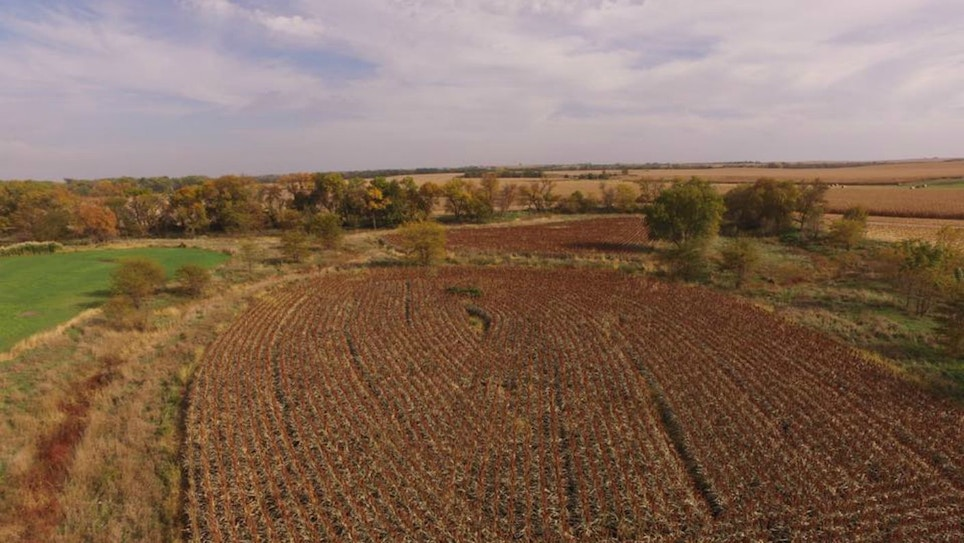 """Can You Have Too Many Whitetails? One Midwest Land Manager Says """"No."""""""