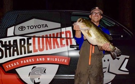 Two 13-Plus Pound Largemouth Bass Recently Loaned to 2019 Texas ShareLunker Program