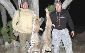 Top Night Hunting Tips for Predators