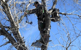 Take to the Trees for December Muleys
