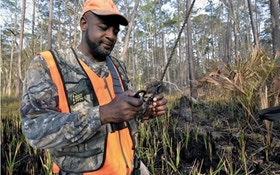 Test Your Knowledge About Treestand Safety