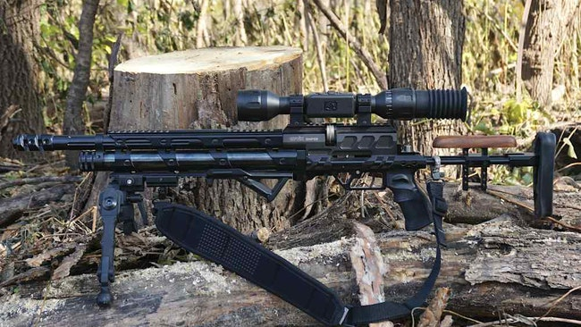 Best Airgun Rifles for Hunting Urban Predators
