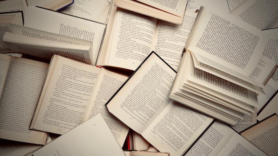 Take the Survey: Treestand Reading