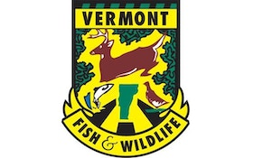 Vermont game wardens seek public tips on poaching