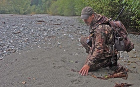 Spot-and-Stalk Black Bear Hunting