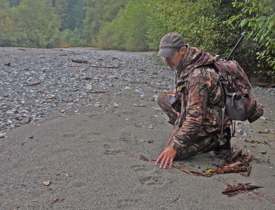 Spot-and-Stalk Black Bear Hunting