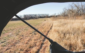 Bow-Friendly Ambushes for Whitetails