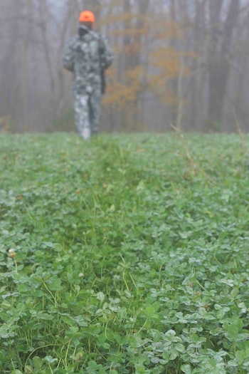 Follow the label when mixing and applying herbicides and you will soon be the proud owner of a weed-free food plot.