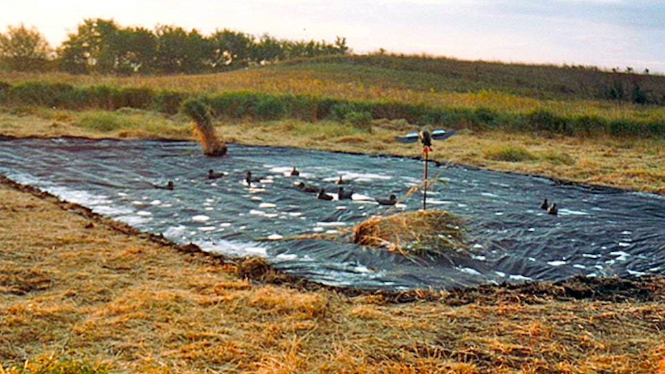 Duck Pond Dried Up? Make One From Plastic!