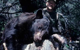 DIY black bear hunting; Looking for a bear? Follow the food