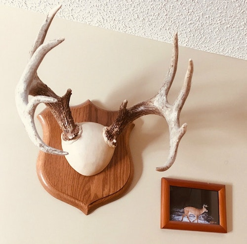 Framed trail cam photos are also a welcomed addition to any trophy display.