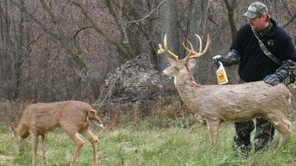 Advanced Stand Hunting Strategies—Part 1