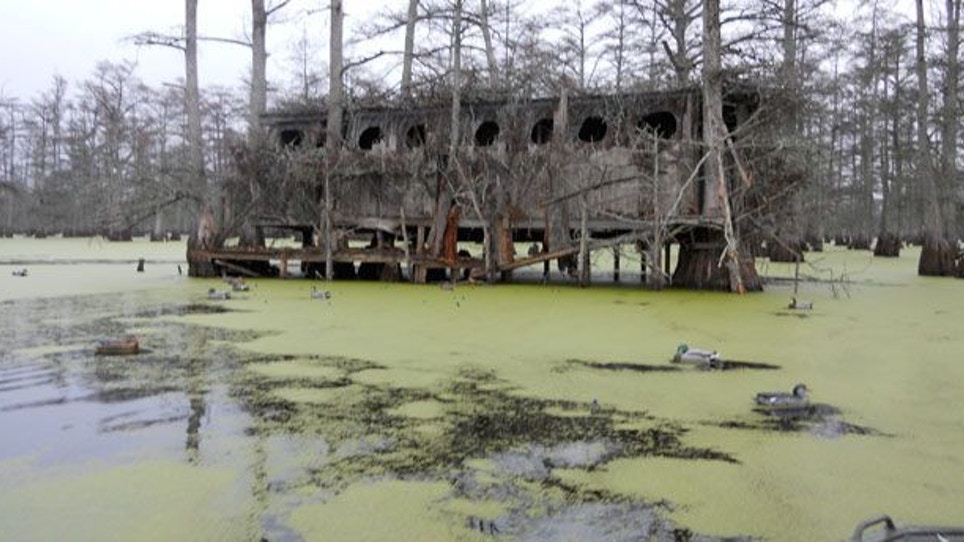 Dream Destination: Beaver Dam, Mississippi