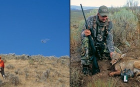 Predator Hunting and Bird Preserves