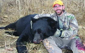 Why Hunting Bans Typically Don't Work