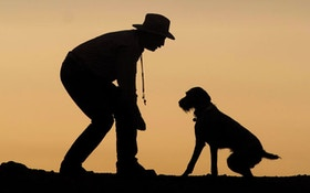 """What The Dogs Taught Me"" Offers Great Tips For Dog Hunters"