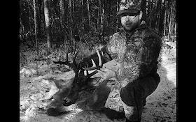 Icing Bucks—Part 1