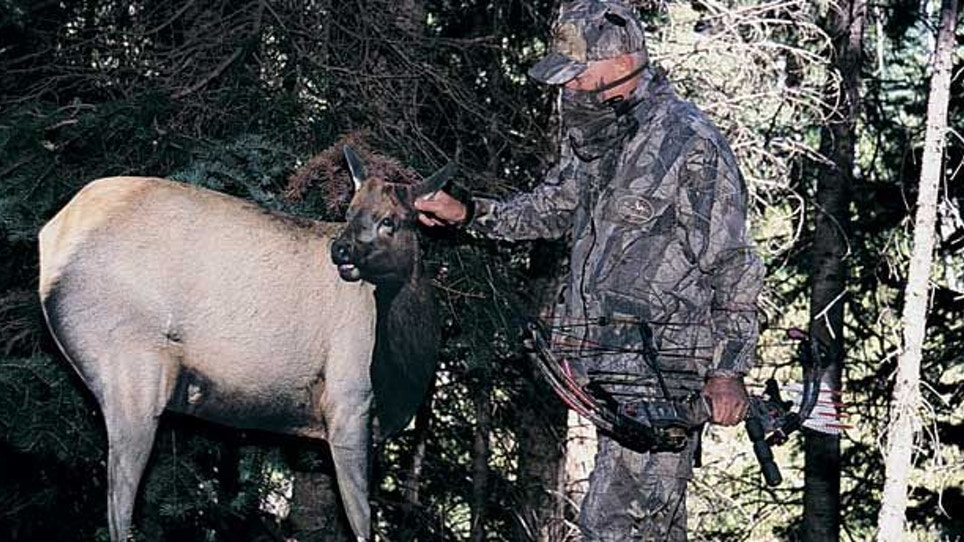 When your normal elk hunting tactics fail, try these—part I