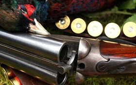 Clay to Game Shooting Services