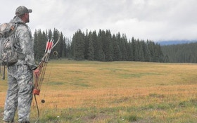 Colorado Public Land Elk Hunting Diary